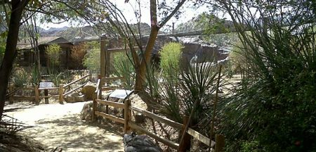 Living Desert Zoo Jaguar Enclosure Title Image