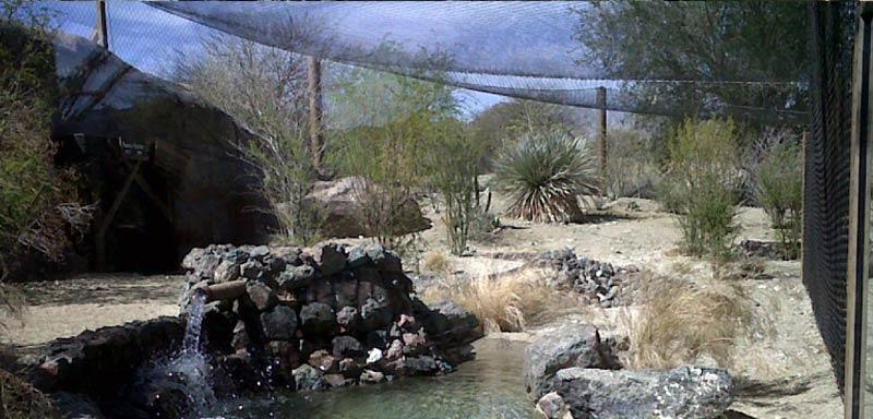 Living Desert Zoo Jaguar Enclosure Krechojard